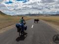 mongolia_tsambagaraw_agi_rower4