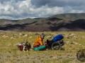 mongolia_tavanbogd_agi_diuna_przyczepka